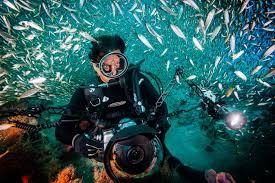 Incredible Underwater Lights Underwater Photographer David Doubilet On Seeing 50 Years Of