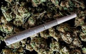 the pros and cons of marijuana legalization and weed there are several advantages to legalizing marijuana most importantly regulations would make marijuana a certain strength and the product safer
