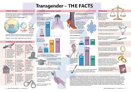 transgender essays essay competitions knowledge steez braver than bigotry counterarguments to the ignorance of trump s transgender ban