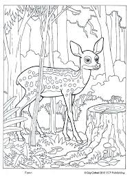 Creature Camouflage Coloring Pages Print Coloring