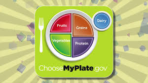 healthy food plate for kids. Brilliant Kids Inside Healthy Food Plate For Kids A