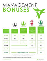 It Works Global Pay Chart It Works Independent Distributor Compensation Plan Body