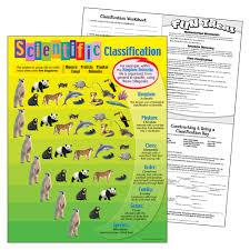 Scientific Classification Learning Chart Promonis