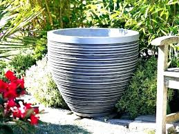 decorative outdoor pots big flower fin club with large design 7 garden nz w large outdoor flower pots