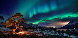 Northern Lights Camping And Caravan Park Northern Lights Hunting In The Narvikregion Visit Narvik