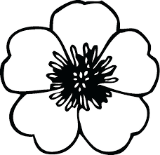 Flower Coloring Pages Free Free Spring Flower Coloring Sheets Flower