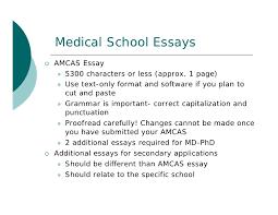 amcas essay characters