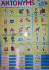 Sucezz Educational Wall Chart Poster Antonyms