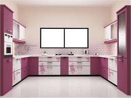 Parallel Kitchen Cute Design Ideas Of Modular Small Kitchen With Parallel Shape And