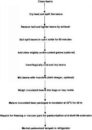 Vinegar Production Flow Chart Basic Changes In The Tempeh Fermentation Process Beverage