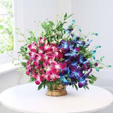 arrangement of 10 blue purple orchids in a basket
