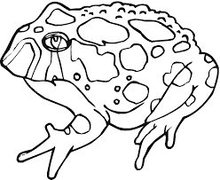 Small Picture Printable Toad Coloring Pages Coloring Me
