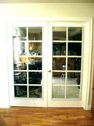 dog door in glass sliding with best doggie insert pet uk install