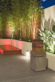 bamboo garden design ideas for patio