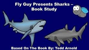 fly guy presents sharks book study this pack includes an anion guide review quiz glossary page voary review 16 voary word cards