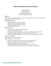 Resume Example High School Student Resume Examples Inspirational Of