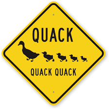 Image result for quack