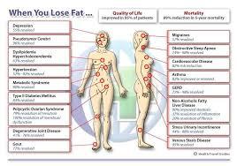 Calorie Burn Chart