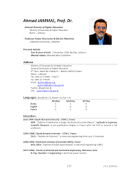 Higher Education Executive Resume Templates At