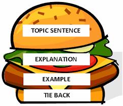yearexplorers essay main body paragraphs hamburger method gif