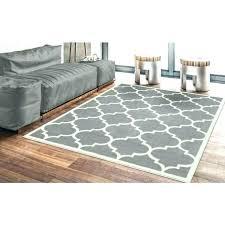 outdoor rug com 5x7 leopard