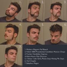 12 Elegant Mens Facial Hair Styles Men S Style Chart Chris