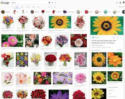 How To Enlarge A Design Is Google Image Search Launching A New Design For Image