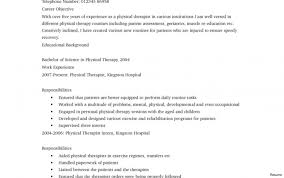 Physical Therapist Resume Samples Therapy Examples Aide Vesochieuxo