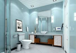 Small Picture Toilet And Bath Design Interior Design Bedroom Ideas On A Budget
