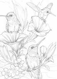 Small Picture 616 best Clipart Birds images on Pinterest Drawings Coloring