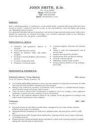 Resume Professional Summary Examples Customer Service Profile