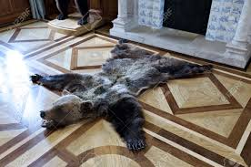 bearskin rug on the floor in front of a fireplace stock photo 50102061