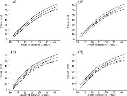 Figure 8 From Charts Of Fetal Size Limb Bones Semantic