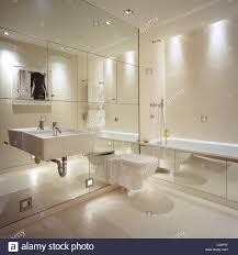 Mirror Cupboards Bedroom Homey Ideas Mirrored Wall Bathroom Cupboards Units Stickers