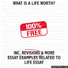 what is a life worth essay what is a life worth