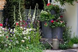 Small Picture Garden design Inspiring ideas RHS Gardening