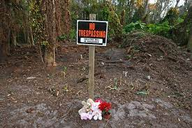 Among these photos are digitally obscured pictures of caylee marie anthony's skull in the wooded area where it was found in 2008. B Pictures B Caylee Anthony S Remains Found The San Diego Union Tribune
