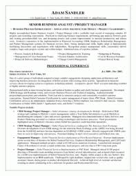 business analyst resume sample doc   job and resume templateback to post    sample business analyst resume template word