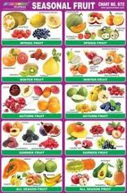 Seasonal Fruit Chart Details About Seasonal Fruits Chart Educational Chart Paper Early Learning Chart For Kids