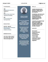 expressive resume template publisher resume templates