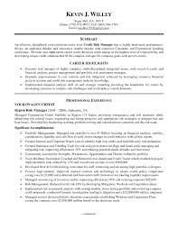 Credit Manager Resume New Resume Samples For Credit Manager India At