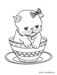 Cute Fat Cat Drawing At Getdrawingscom Free For Personal Use Cute