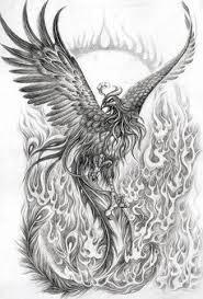 Phoenix Drawing Kklani Flickr