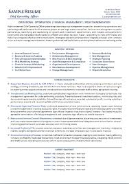 Ceo Resume Amazing CEO Resume Example Melbourne Resumes