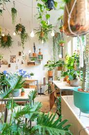 Elegant Ideas For Indoor Potted Plants Design Best Ideas About Indoor Plant  Decor On Pinterest Plant Decor