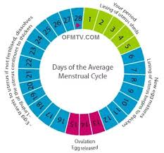 Pregnancy Chance Chart Can A Girl Get Pregnant After The 23 Day Of Period Quora