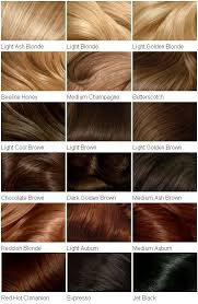Light Brown Hair Color Chart Hair Colour Chart Clairol Hair Color Chart Clairol Hair