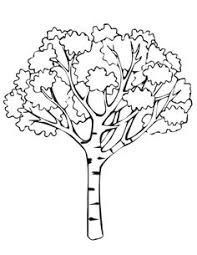 Small Picture simple coloring pages Oak Tree clip art vector clip art online