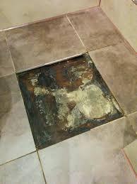 bathtub mold anti mold bathtub caulk grout mold