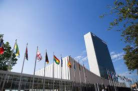 shp mlow united nations lr jpg winners of many languages one world to present at united nations general assembly in 2017